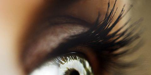 Brown, Green, Eye, Eyelash, Eyebrow, Iris, Amber, Organ, Beauty, Colorfulness,