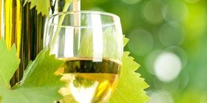 Fluid, Drinkware, Glass, Stemware, Yellow, Liquid, Wine glass, Barware, Drink, Tableware,