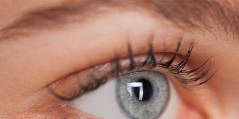 Brown, Skin, Eyelash, Eyebrow, Iris, Organ, Beauty, Close-up, Photography, Aqua,