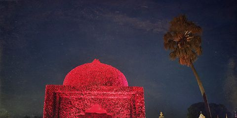 Night, Landmark, Arch, Midnight, Arecales, Holiday, Palm tree, Festival, Decoration,