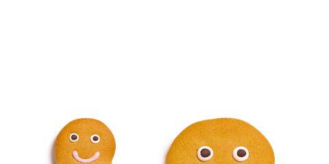 Brown, Organism, Ingredient, Food, Finger food, Dessert, Gingerbread, Baked goods, Cookies and crackers, Biscuit,