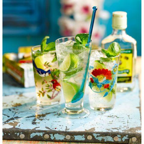 best cocktail recipes mojito