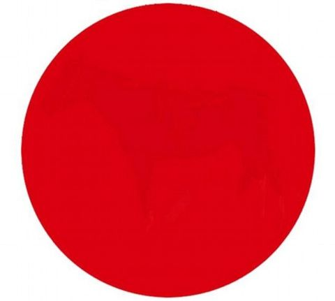 Can you see what's hidden in this red circle?