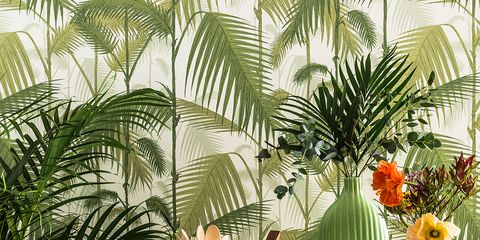 Tablecloth, Table, Flowering plant, Botany, Terrestrial plant, Linens, Arecales, Home accessories, Illustration, Centrepiece,