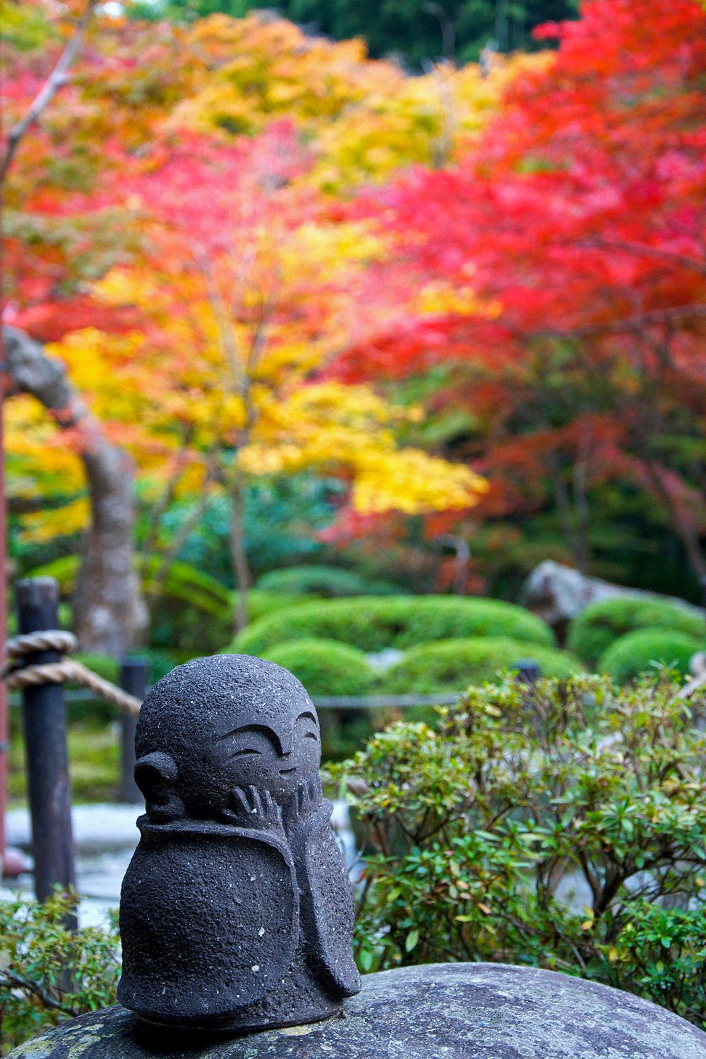 The deep red foliage of maples in Autumn helps mark the seasons in a Japanese garden (Picture: Getty) & How to plant a Japanese garden in a small space