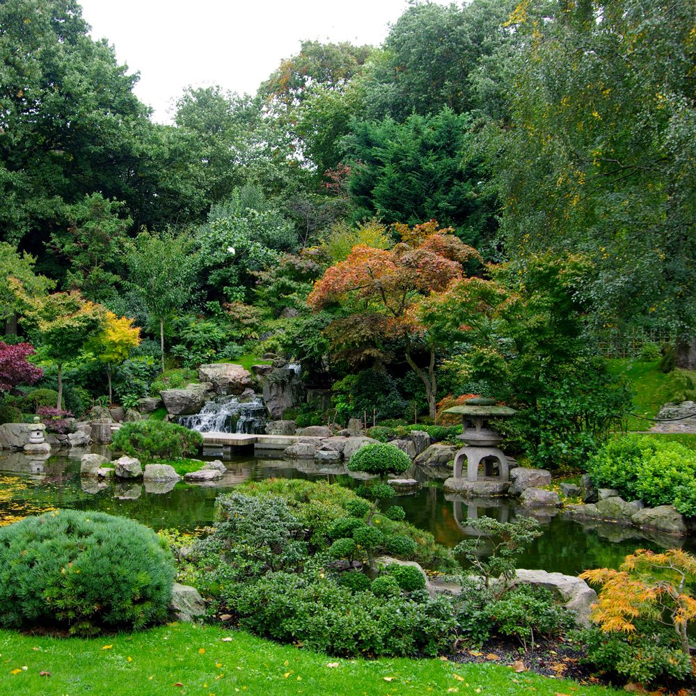 Delightful From Ancient Times The Japanese Had A Tradition For Creating Gardens That  Capture The Natural Landscape. They Combine The Basic Elements Of Plants,  ...