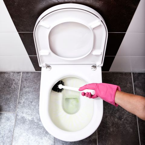 The easiest way to clean the toilet on to clean sink, to clean basement, to clean bedroom, to clean the living room, to clean furniture, to clean computer, to clean water, to clean kitchens, to clean food, to clean carpet,