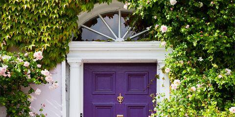 Wood, Green, Property, Door, Purple, Home door, House, Real estate, Fixture, Shrub,