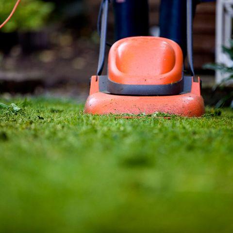 Vert, herbe, Orange, plastique, pelouse, caoutchouc synthétique, nature morte, photographie