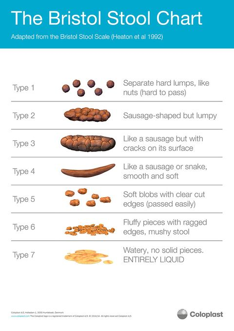 Bristol stool chart what does poo and bowels say about health