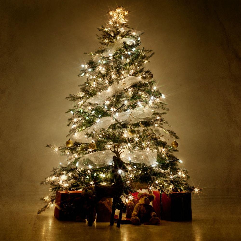 putting lights on christmas tree putting lights on a christmas