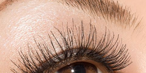 Blue, Brown, Skin, Eyelash, Eyebrow, Iris, Amber, Beauty, Organ, Eye shadow,