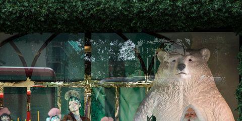 Toy, Retail, Holiday, Polar bear, Bag, Display window, Display case, Bear, Rodent, Christmas,