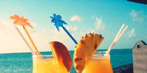 Drink, Juice, Glass, Tableware, Orange, Liquid, Cocktail, Drinkware, Stemware, Drinking straw,