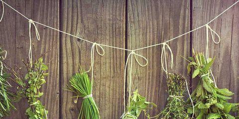 Green, Plant, Leaf, Herb, Flower, Wood, Vascular plant, Flowering plant, Vegetable, Twig,