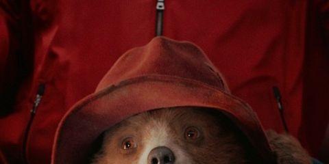 Outerwear, Snout, Hood, Smile, Sloth, Jacket, Illustration,