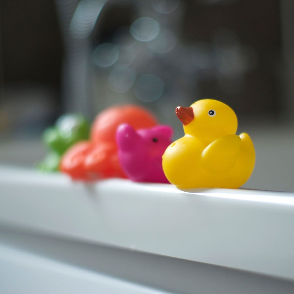 Bacteria in bath toys - How to clean rubber ducks