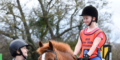 Horse, Halter, Bridle, Rein, Mammal, Horse supplies, Horse tack, Animal sports, Equestrianism, Outdoor recreation,