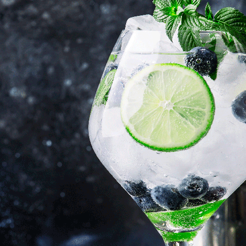 Lime, Gin and tonic, Lemon-lime, Drink, Mojito, Key lime, Limeade, Non-alcoholic beverage, Vodka and tonic, Distilled beverage,