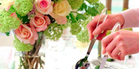 Food, Cuisine, Petal, Ingredient, Leaf vegetable, Dishware, Recipe, Bouquet, Dish, Peach,