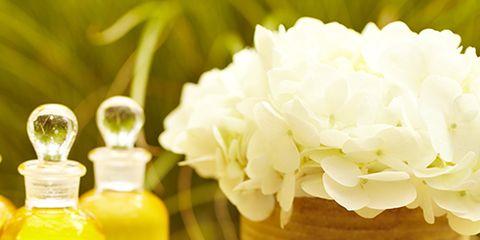 Yellow, Petal, Ingredient, Flower, Bottle, Liquid, Serveware, Glass bottle, Perfume, Flowering plant,