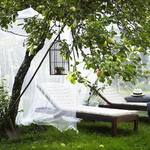 Garden, Outdoor furniture, Net, Twig, Yard, Lawn, Outdoor bench, Backyard, Street furniture, Sun hat,