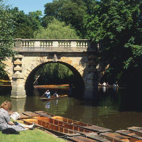 Body of water, Waterway, Tree, Arch bridge, Arch, Channel, Bridge, Canal, Watercourse, Watercraft,