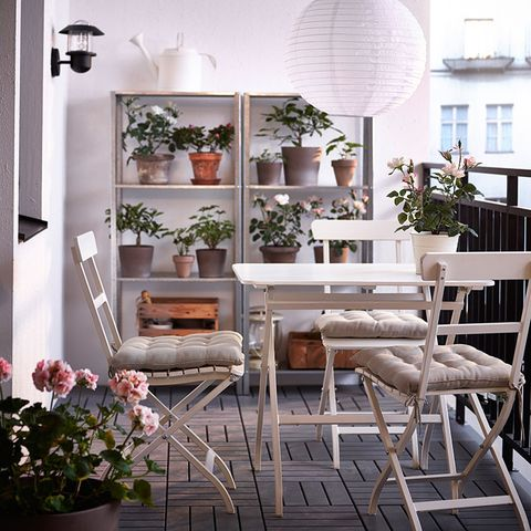 Plant, Interior design, Room, Flowerpot, Interior design, Home, Chair, Houseplant, Outdoor furniture, Hardwood,