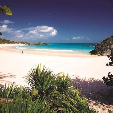 Coastal and oceanic landforms, Shore, Coast, Sand, Ocean, Beach, Tropics, Azure, Caribbean, Sea,