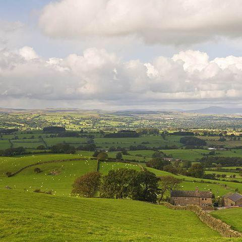 Cloud, Natural landscape, Plain, Landscape, Field, Land lot, Grassland, Rural area, Pasture, Ecoregion,