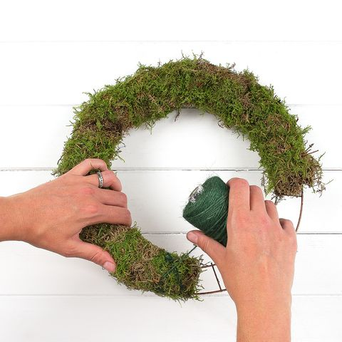 Finger, Green, Thumb, Algae, Green algae, Gesture, Seaweed, Non-vascular land plant,