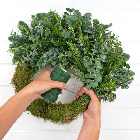 Finger, Leaf, Ingredient, Herb, Produce, Leaf vegetable, Fines herbes, Thumb, Annual plant, Vegetable,