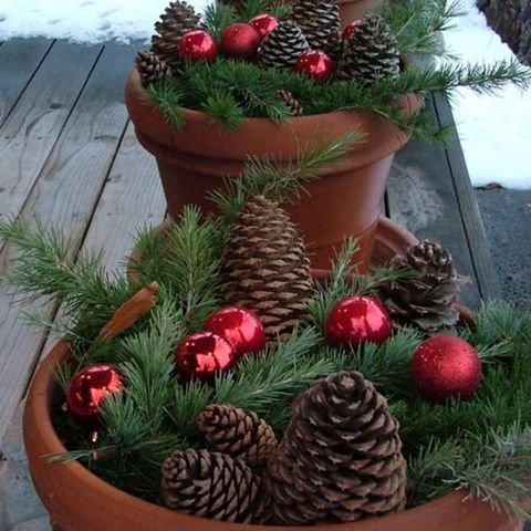 image - Christmas Flower Decorations