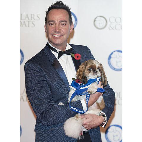 Human, Collar, Dog breed, Carnivore, Dog, Mammal, Formal wear, Suit, Dress shirt, Bow tie,