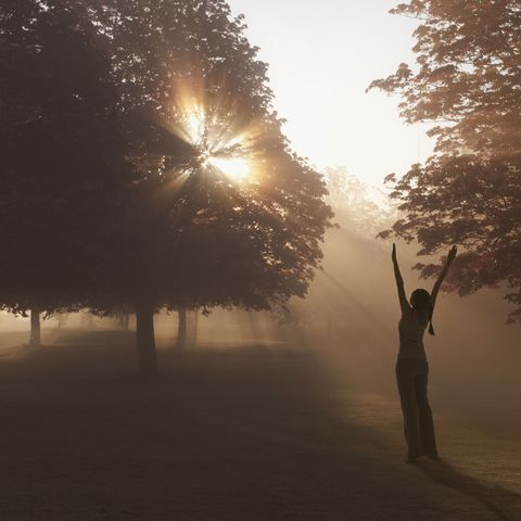 Sun, Atmospheric phenomenon, Tree, People in nature, Backlighting, Sunlight, Light, Sunrise, Morning, Tints and shades,