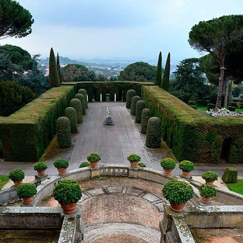 Plant, Shrub, Garden, Landscape, Hedge, Landscaping, Evergreen, Botanical garden, Park, Courtyard,