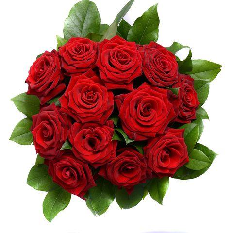 Petal, Flower, Bouquet, Red, Leaf, Cut flowers, Rose family, Flowering plant, Flower Arranging, Floristry,