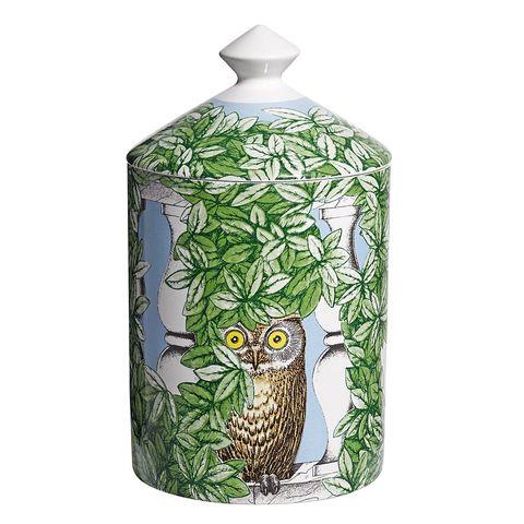 Bird, Beak, Teal, Bottle, Artifact, Porcelain, Creative arts, Bird of prey, Falconiformes, Pattern,