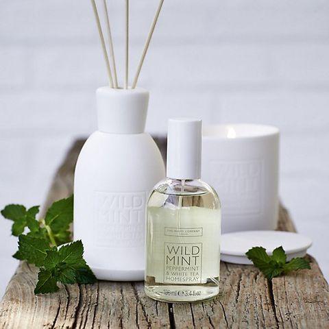 Wild Mint Home Spray 15 The White Company