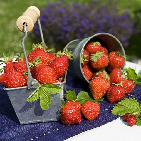 Fruit, Natural foods, Food, White, Produce, Strawberry, Sweetness, Accessory fruit, Vegan nutrition, Strawberries,