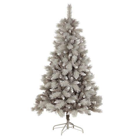 balsam fir, Colorado spruce, White pine, Yellow fir, Christmas tree, Tree, oregon pine, shortleaf black spruce, Christmas decoration, lodgepole pine,
