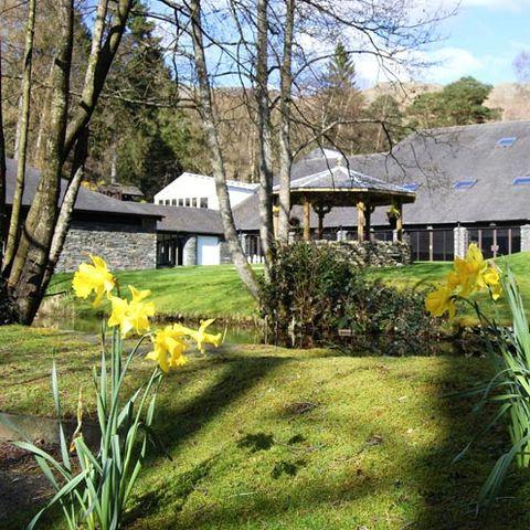 Plant, Flower, House, Petal, Garden, Shrub, Botany, Flowering plant, Roof, Home,