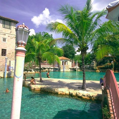 Body of water, Water, Leisure, Tourism, Resort, Swimming pool, Town, Aqua, Woody plant, Arecales,