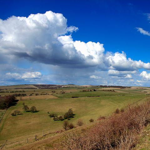 Grass, Sky, Cloud, Natural landscape, Plain, Plant community, Landscape, Grassland, Field, Land lot,
