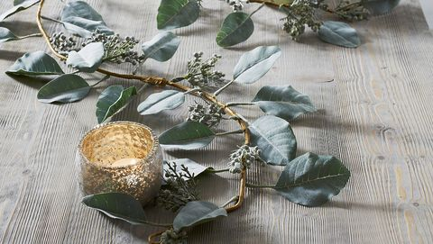Branch, Leaf, Flower, Twig, Plant, Fashion accessory, Table, Floral design, Beige, Jewellery,