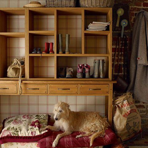 Room, Shelf, Shelving, Furniture, Cabinetry, Bag, Cupboard, Terrestrial animal, Drawer, Linens,