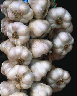 Ingredient, Whole food, Natural foods, Local food, Garlic, Vegan nutrition, Vegetable, Elephant garlic, Produce, Allium,