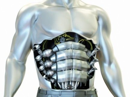 Sleeve, Shoulder, Joint, Standing, Chest, Muscle, Back, Trunk, Fictional character, Armour,
