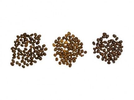Brown, Ingredient, Leaf, Spice, Beige, Produce, Masala, Allspice, Parsley family, Wattleseed,