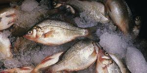 Seafood, Grey, Fish, Fish products, Fish, Ray-finned fish, Silver, Salted fish, Bony-fish,